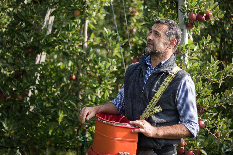 Organic Apple Farmer Bernhard Lösch Biosüdtirol South Tyrol Europe